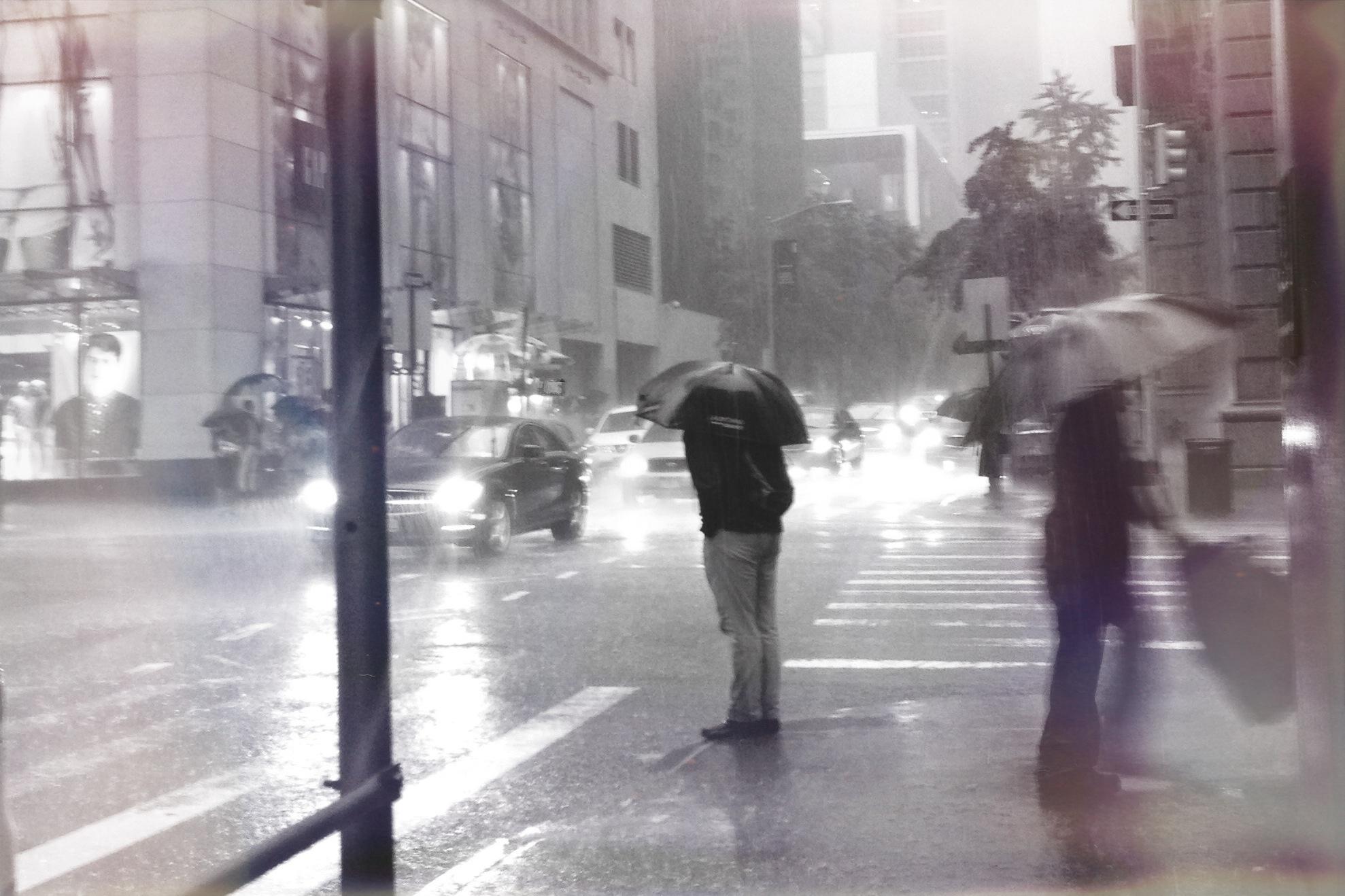 NYC, New York, 5th Avenue